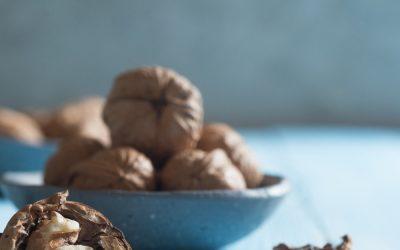 La noix, ce superaliment à consommer sans modération !